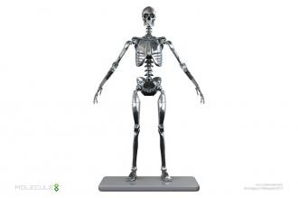 Stainless Steel Mark I Endoskeleton Action Figure 1/6