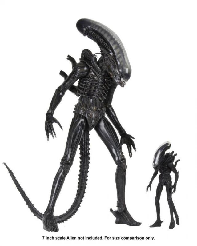 Alien: Big Chap -1979 Ultimate 40th Anniversary - Figure 1/4 - Neca