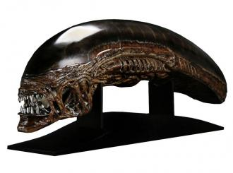 Alien Resurrection Replica 1/1 New Warrior Head 90 cm